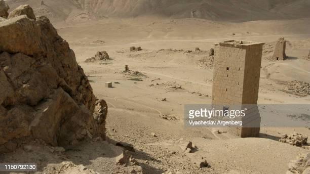 funerary towers, 1st century ad, palmyra, syria - argenberg imagens e fotografias de stock