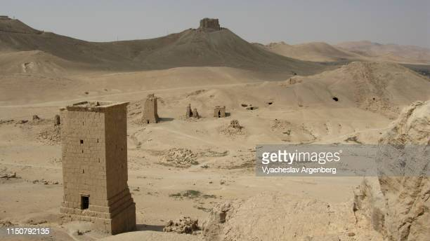 funerary towers, 1st century ad, palmyra, syria - argenberg stock pictures, royalty-free photos & images