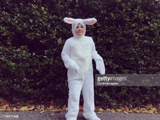 funny portrait of a boy dressed in a rabbit costume - lapin photos et images de collection