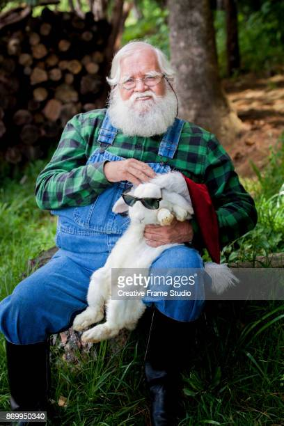 Funny Santa Claus putting his hat and sunglasses to a tender white rabbit.