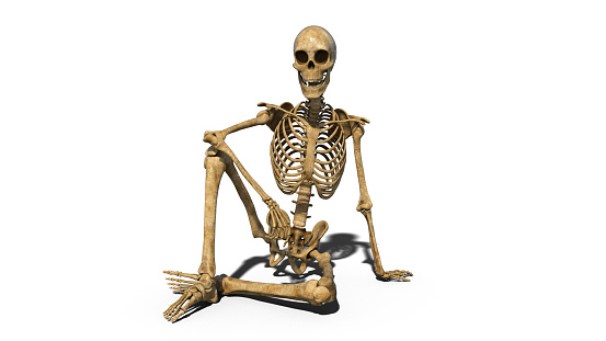 Funny skeleton sitting on ground and smiling, human skeleton isolated on white background, 3D render 1047914410