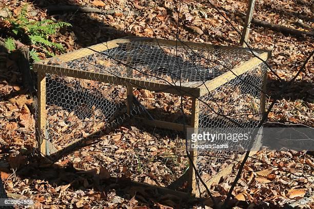 fur hunters small animal trap in the wilderness - encurralado - fotografias e filmes do acervo