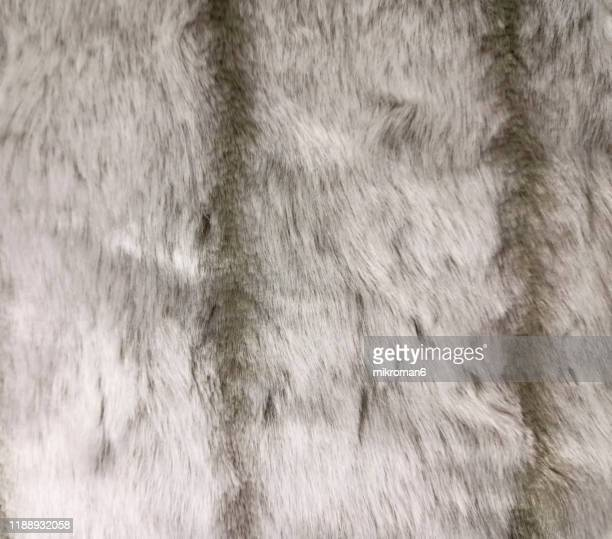 fur texture background. - textile stock pictures, royalty-free photos & images