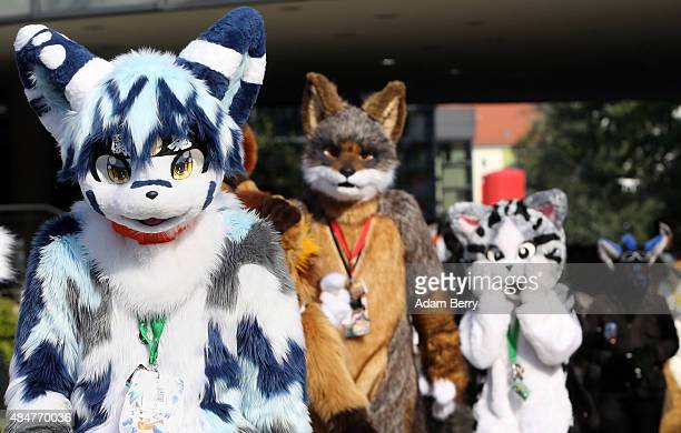 Furry enthusiasts attend the Eurofurence 2015 conference on August 21 2015 in Berlin Germany Furry fandom a term used in zines as early as 1983 and...