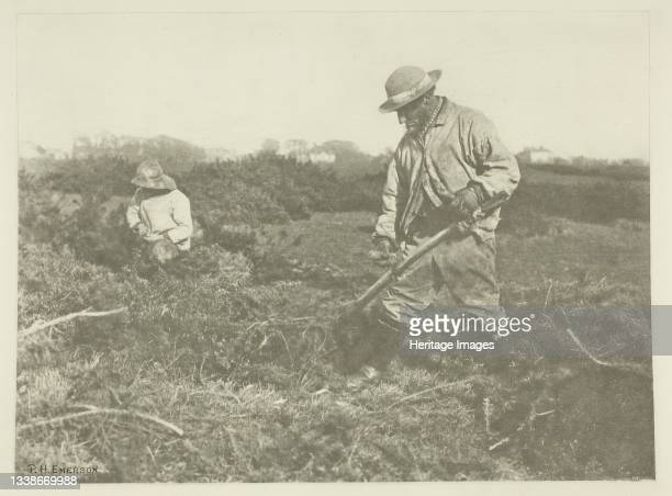 Furze-Cutting on a Suffolk Common, circa 1883/87, printed 1888. A work made of photogravure, pl. Xiii from the album 'pictures of east anglian life'...