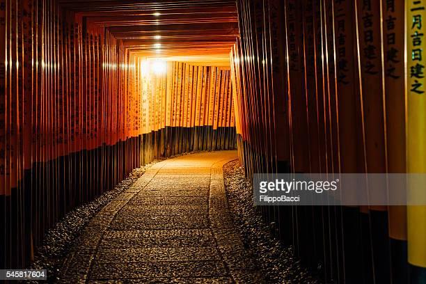 Fushimi Inari Torii Gates In Kyoto, Japan
