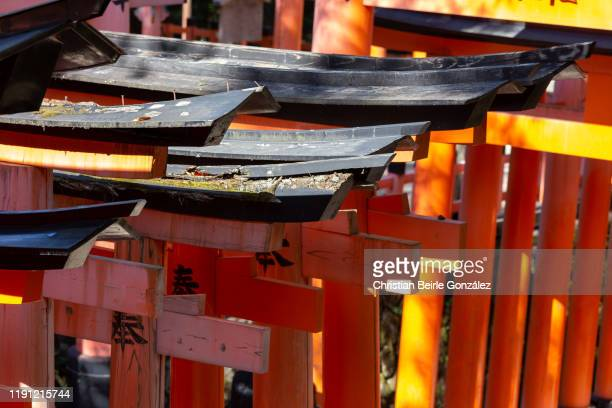 fushimi inari-taisha shrine - christian beirle gonzález stock pictures, royalty-free photos & images