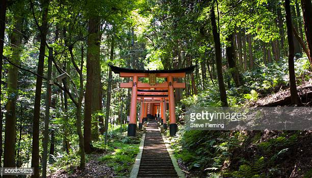 Fushimi Inari-taisha trail winds its way through a series of hills. Along the trail are thousands of torrii gates.