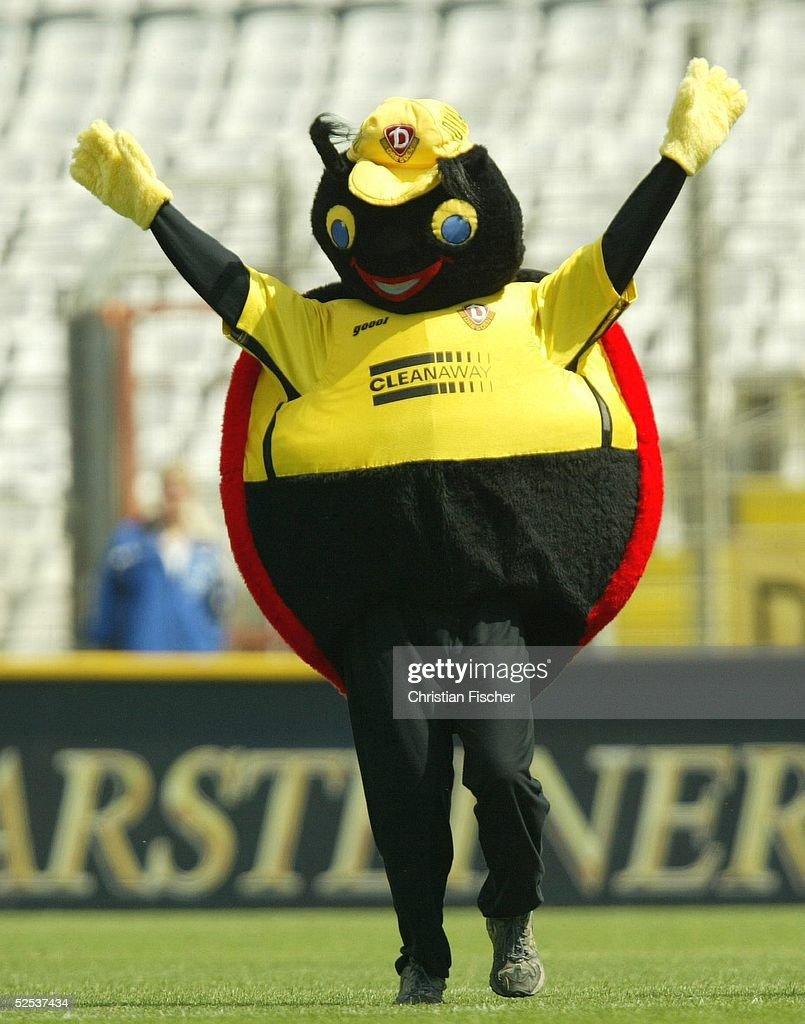 Dynamo Dresden Maskottchen