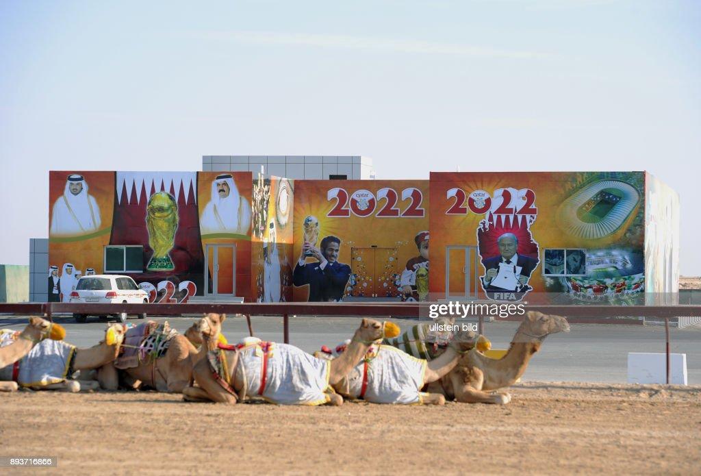 Fussball International Fifa Wm 2022 Kamelrennen Doha Ein