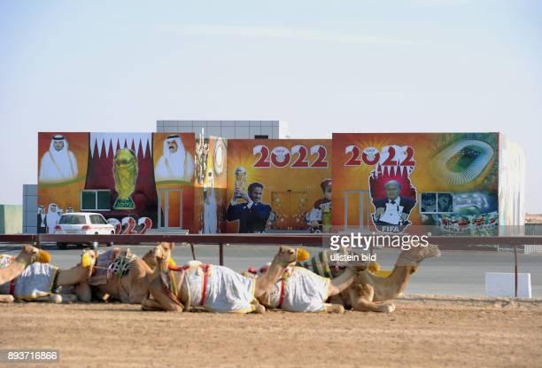 Fussball International FIFA WM 2022 / Kamelrennen Doha Ein Haus an der Kamelrennbahn bei Doha ist mit Bildern von HH Sheikh Hamad bin Khalifa AlThani...
