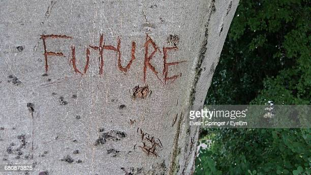 Future Text Carved On Wall