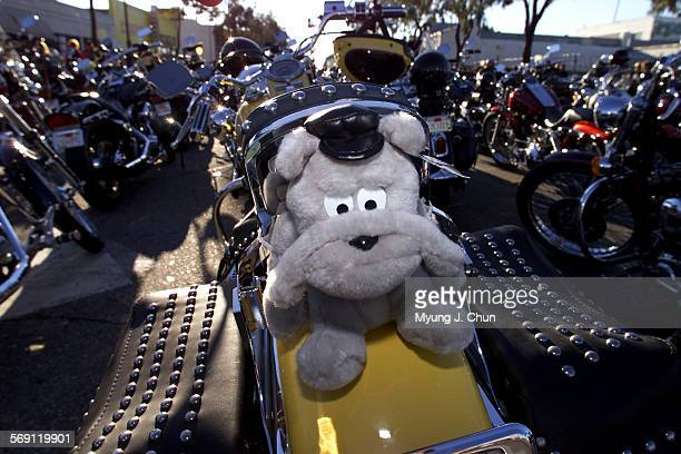 A fuzzy passenger waits for the start of the 17th annual Love Ride benefiting muscular dystrophy The ride begins at the Harley–Davidson of Glendale...