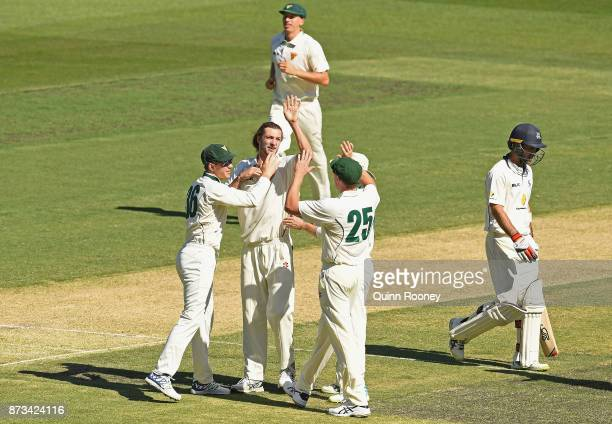 Gabe Bell of Tasmania is congratulated by team mates after getting the wicket of Glenn Maxwell of Victoria during day one of the Sheffield Shield...