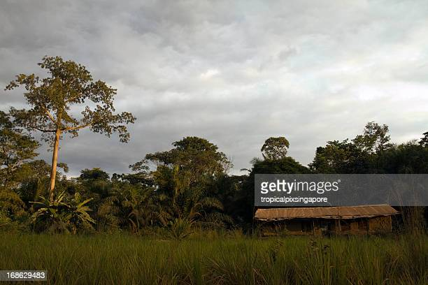 Gabon, Lambarene, house in forest.