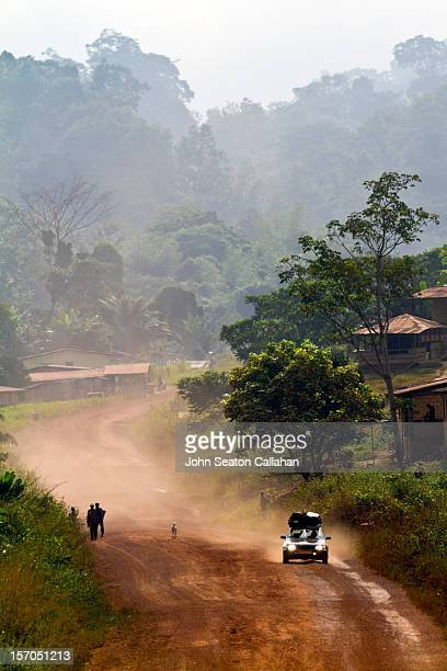 gabon, moyen-ogooué province, forest. - gabon stock pictures, royalty-free photos & images