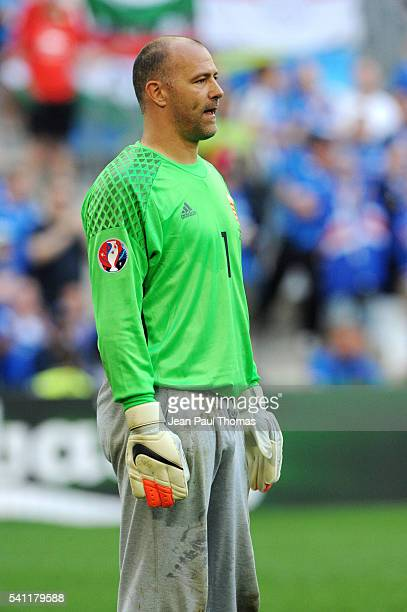 Gabor KIRALY of Hungary during the UEFA EURO 2016 Group F match between Iceland and Hungary at Stade Velodrome on June 18 2016 in Marseille France