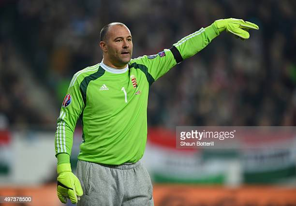 Gabor Kiraly of Hungary during the UEFA EURO 2016 qualifier playoff second leg match between Hungary and Norway at Groupama Arena on November 15 2015...