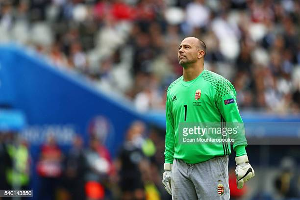 Gabor Kiraly of Hungary in action during the UEFA EURO 2016 Group F match between Austria and Hungary at Stade Matmut Atlantique on June 14 2016 in...