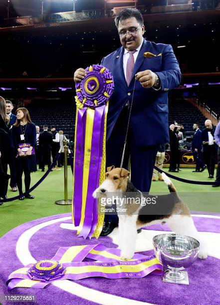 Gabriel Rangel poses with 'King' the Wire Fox Terrier after winning Best in Show at the 143rd Westminster Kennel Club Dog Show at Madison Square...