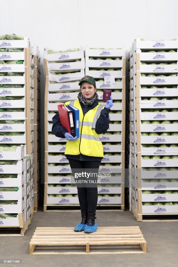 Gabriela Szomoru 32 a Romanian book-keeper at a salad farm poses with her Romanian passport surrounded by boxes of salad inside a cold storage room at ...  sc 1 st  Getty Images & Gabriela Szomoru 32 a Romanian book-keeper at a salad farm poses ...