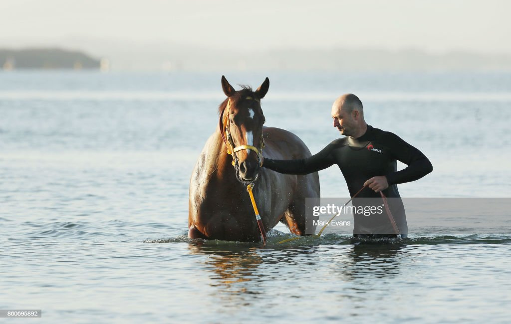 Gai Waterhouse trained horse English prepares for tomorrow's The Everest, with handler Dave Meijer at Botany Bay on October 13, 2017 in Sydney, Australia.