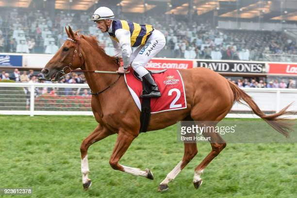 Gailo Chop ridden by Mark Zahra heads to the barriers before the Carlton Draught Peter Young Stakes at Caulfield Racecourse on February 24 2018 in...