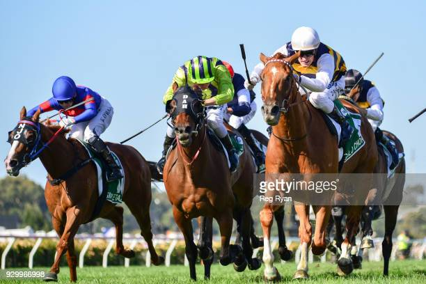 Gailo Chop ridden by Mark Zahra runs in the TAB Australian Cup at Flemington Racecourse on March 10 2018 in Flemington Australia