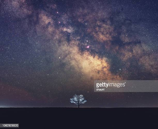 galactic solitude - constellation stock pictures, royalty-free photos & images