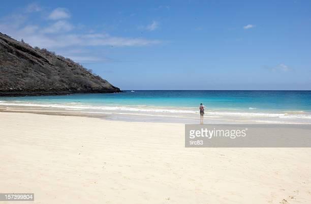 Galapagos beach white sand