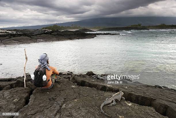 Galapagos seascape with visitor and iguana
