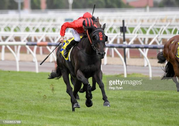 Galaxy Raider ridden by Teodore Nugent wins the The Hong Kong Jockey Club Trophy at Flemington Racecourse on February 15 2020 in Flemington Australia