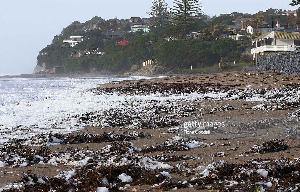 Gale force winds whip up the surf sea foam and seaweed at Mairangi Bay on July 9, 2014 in Auckland, New Zealand. A severe weather warning remains in place as wild weather hits Auckland, causing mass power outages, property damage, high winds and heavy rain.