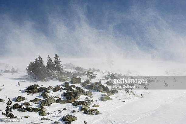 gale-force winds blowing newly-fallen snow during a windstorm, mt. glungezer, tirol, austria, europe - snow squall stock photos and pictures