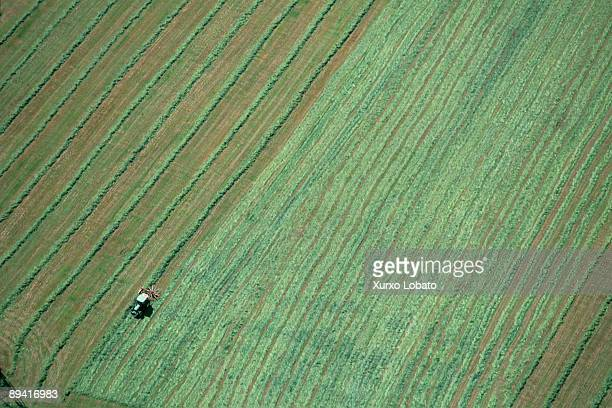 Galicia from the air The crops that occupy the largest tracts of land belong to the category of livestock fodder accounting for 230020 ha followed by...