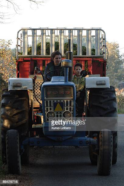 Galicia Mother and son in a tractor with grass for cattle near the river Mino in Outeiro de Rei Terra Cha Lugo