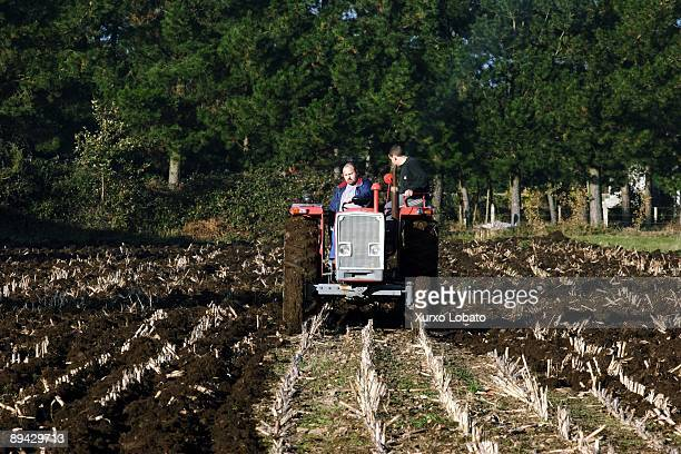 Galicia Peasants cultivating the ground with tractor near the river Mino in Outeiro de Rei Terra Cha Lugo