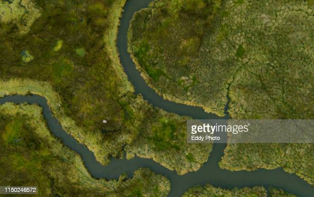 galician marshes (aerial view) - marsh stock pictures, royalty-free photos & images