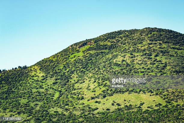 galilee hills in northern idrael - historical palestine stock pictures, royalty-free photos & images