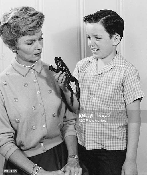 BEAVER Gallery 19571963 Barbara Billingsley Jerry Mathers
