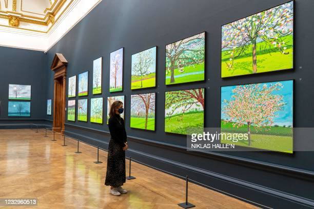 Gallery assistant poses at a photocall for the opening of David Hockney: The Arrival of Spring, Normandy, 2020 at the Royal Academy in London on May...