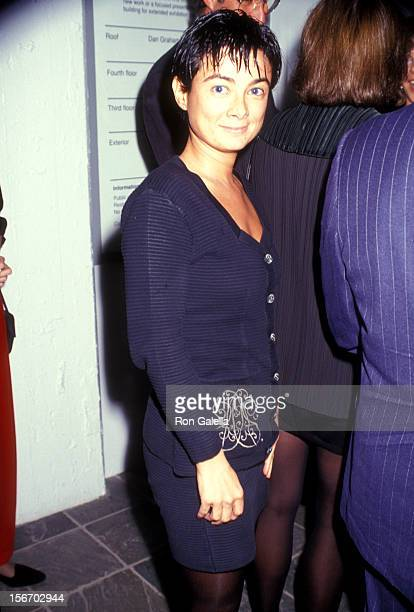 Gallery owner Mary Boone attends The Dia Center for the Arts' Fall Gala Unveiling of Brice Marden's Cold Mountain Exhibit on October 15 1991 at The...