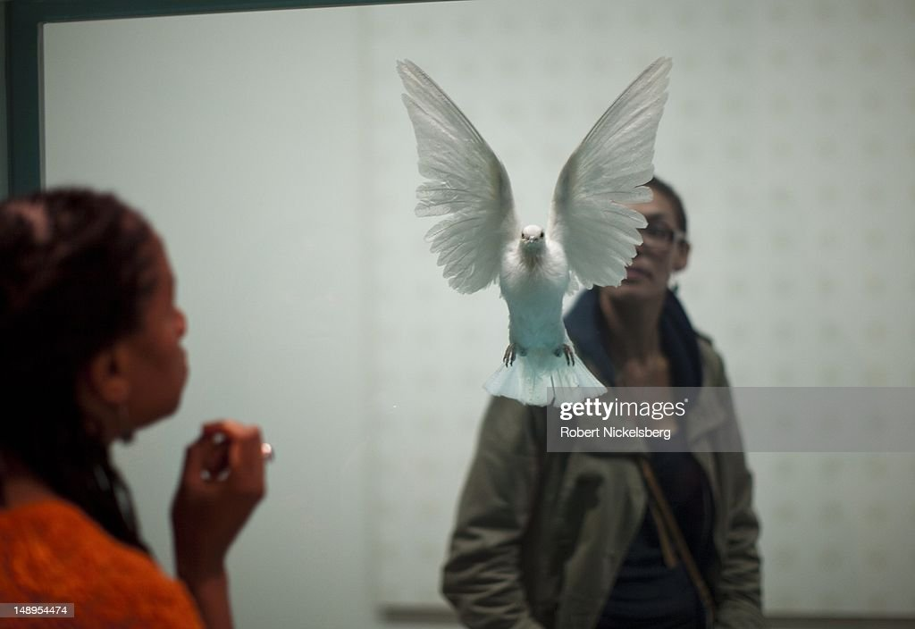 Gallery visitors gather in front of a Damien Hirst created vitrine of a dead white dove the Tate Modern Museum July 2, 2012 in London, England.