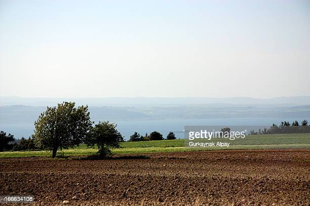 CONTENT] Gallipoli Battlefield