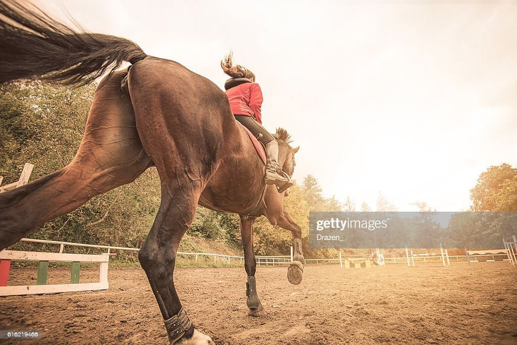 Galloping horse with rider : Stock Photo