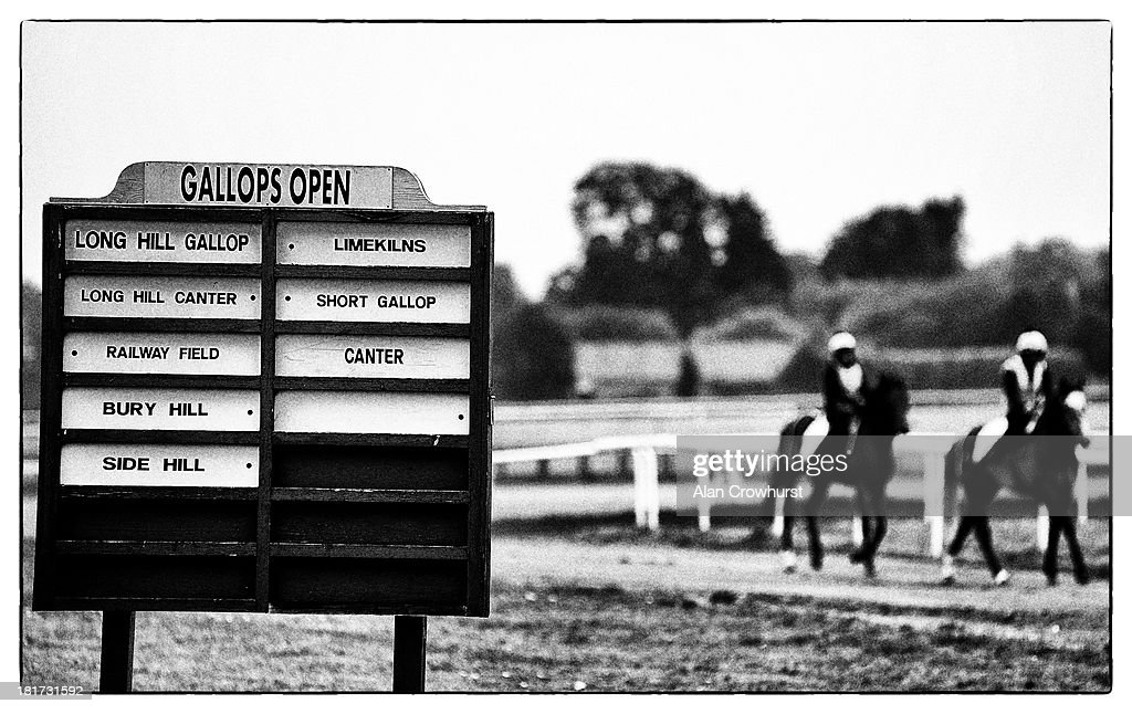 Gallops information board on Warren Hill on September 24, 2013 in Newmarket, England.