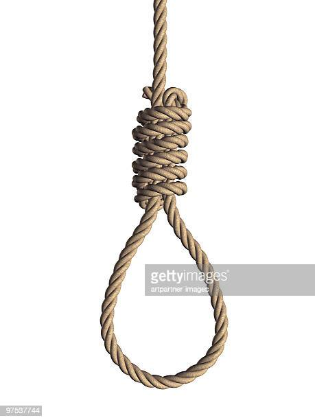gallows noose on white background  - hanging gallows stock photos and pictures