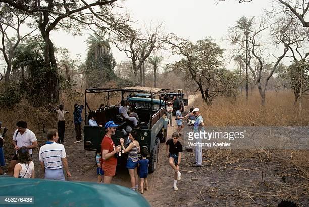 Gambia Tourists On Bush Safari