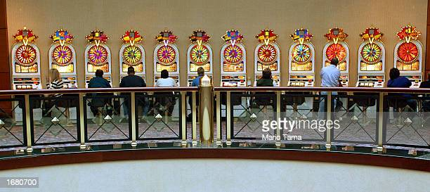 Gamblers play on slot machines at Foxwoods Resort Casino November 22 2002 in Mashantucket Connecticut Foxwoods Resort Casino is owned and operated by...