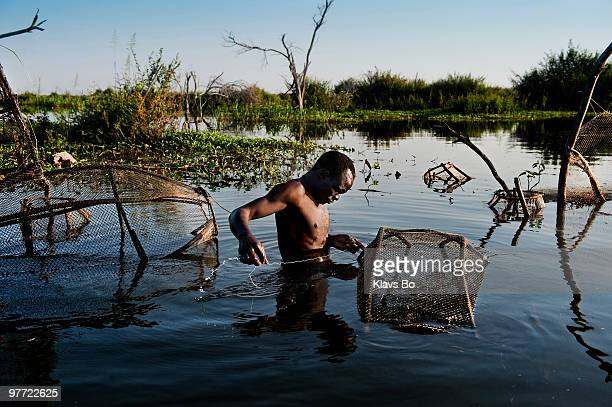 Gambo Mahamadou is standing chestdeep in the still waters of what is left of Lake Chad tending his fishing traps Here at the very far South Eastern...